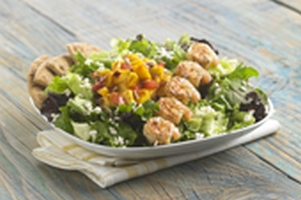 Daphne's California Greek: healthy fast food Restaurant