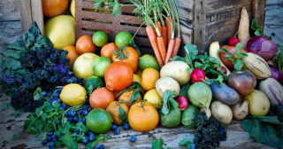 My Edible Garden Series What To Do In November With David Rizzo