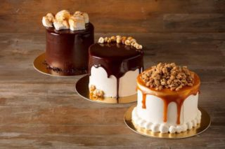 Blackmarket Bakery DTSA Cakes