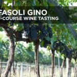 Michael's On Naples Fasoli Gino Wine Tasting