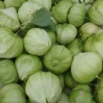 Farmhouse At Roger's Gardens Tomatillo Salsa Recipe