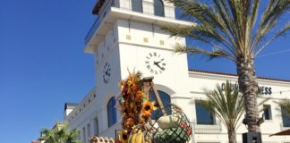 PHR Fall Decorations