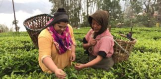 International Tea Importers Trip