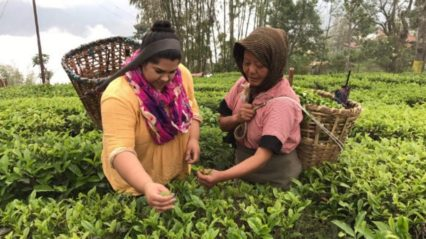 Travel to India for Tea Tours @ India