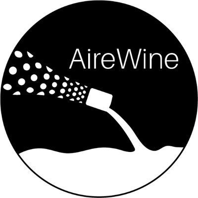 AireWine Bottle