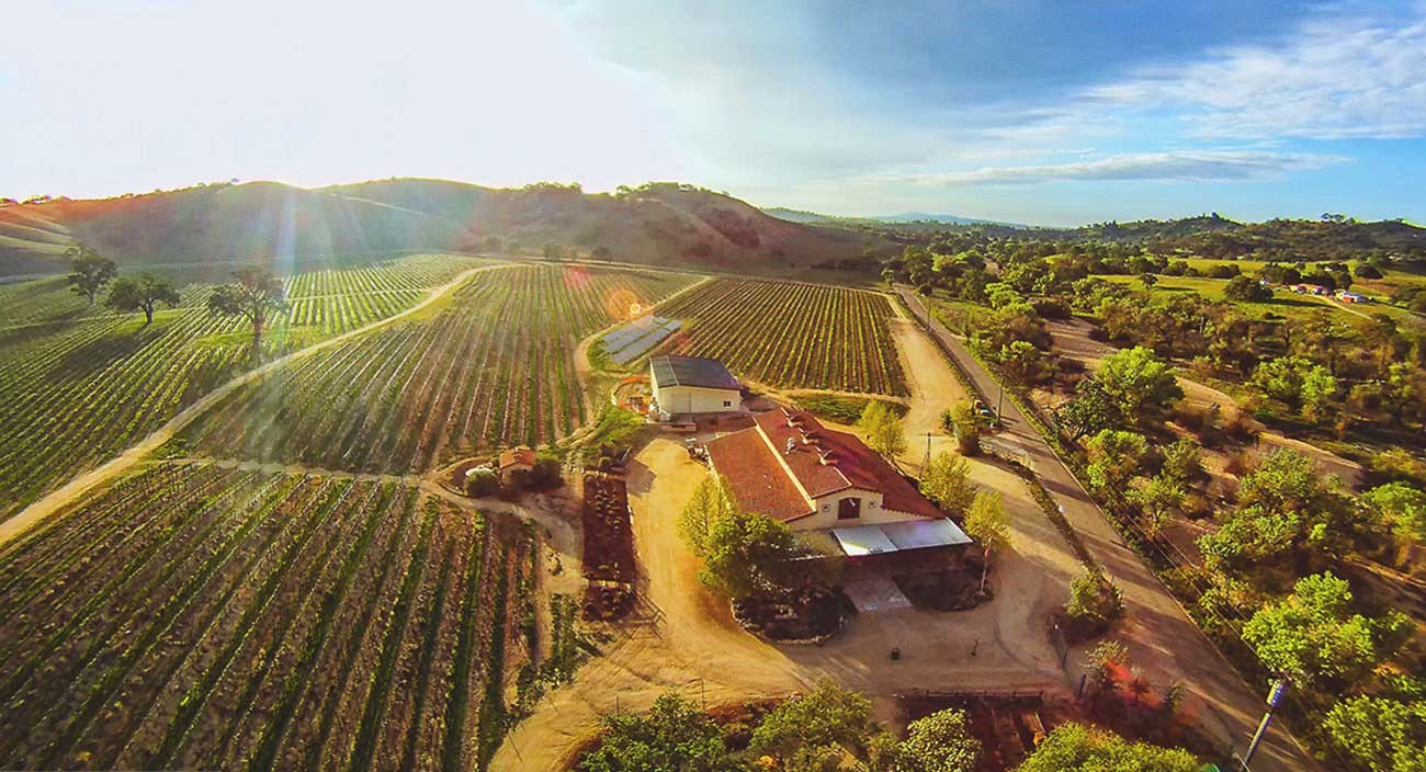 Bold Wines of Paso Robles | Great Taste Events