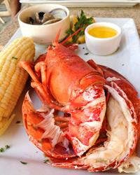 Bluewater-Grill-New-England-Lobster