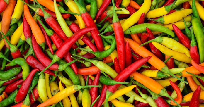 Peppers And Herbs 101 With Steve Goto