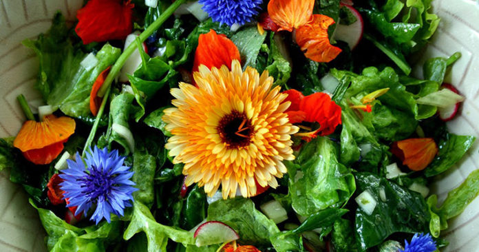 Planting Flowers And Edibles For Summertime Festivities With Tracy Wankner AndAnthony Malek