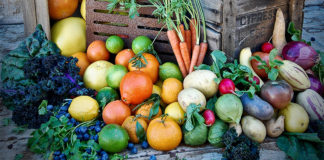 My Edible Garden Series What To Do In August With Steve Hampson