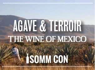 Agave And Terroir: the Wine of Mexico