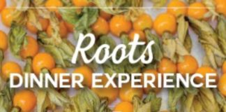 Marina Kitchen Roots Dinner Series