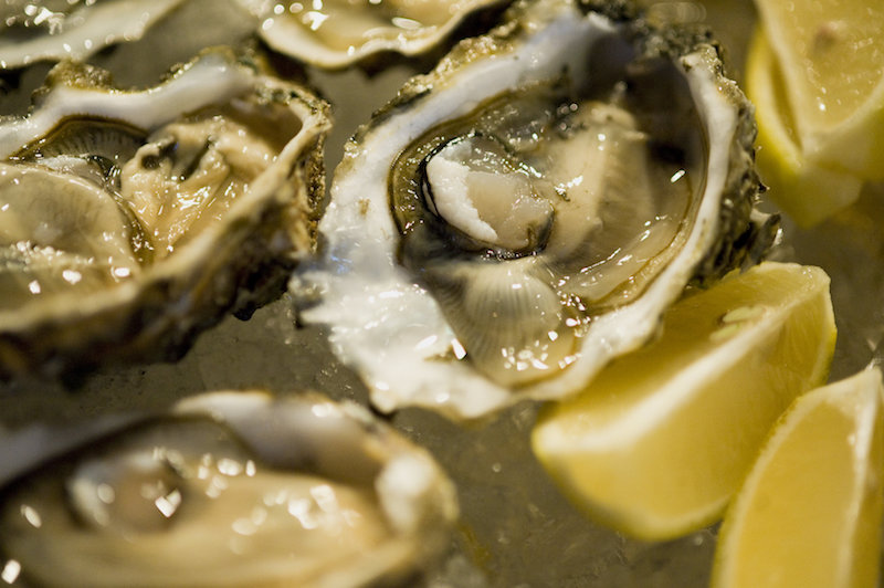 Taps Oysters