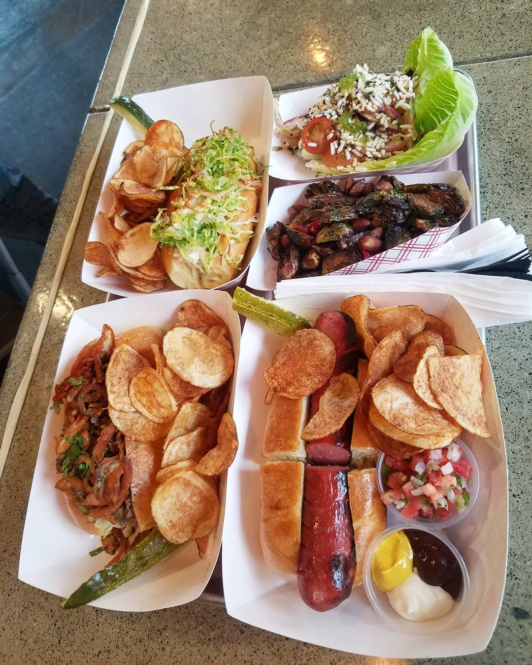 Tackle Box Costa Mesa Dogs