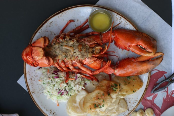 New Bluewater Holiday Stuffed Lobster 2