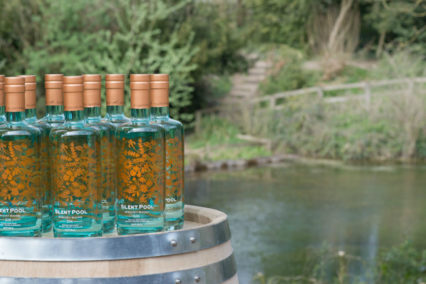 Gin: The Deep Dive @ Pacific Food & Beverage Museum - San Pedro