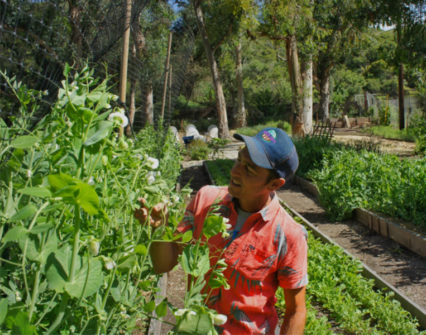 Harvest Garden Tours with Farmer Leo @ Ranch (The) at Laguna Beach - Laguna Beach | Laguna Beach | California | United States