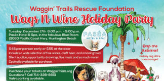 Waggin Trails Rescue Holiday Party 2019