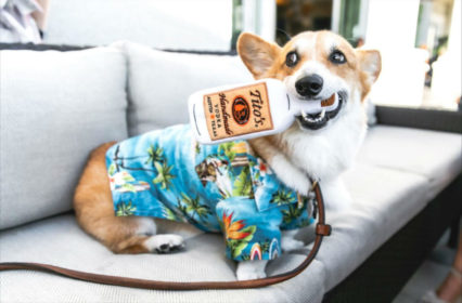 Howliday Yappy Hour @ A&O Kitchen + Bar at Balboa Bay Resort - Newport Beach | Newport Beach | California | United States