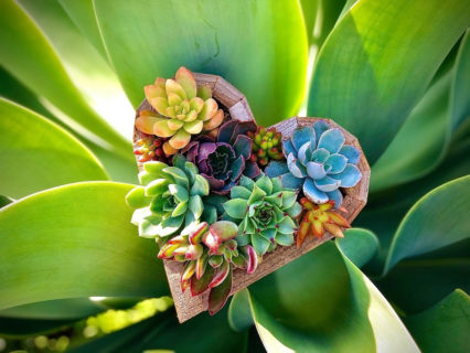 Wood Succulent Heart Workshop with Fenny's Flowers @ 17th Street Bar & Grill - Tustin | Tustin | California | United States