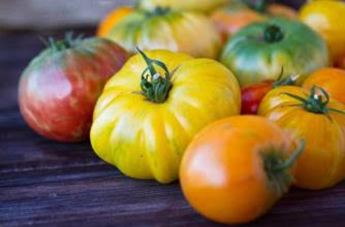 The Ranch Heirloom Tomatoes