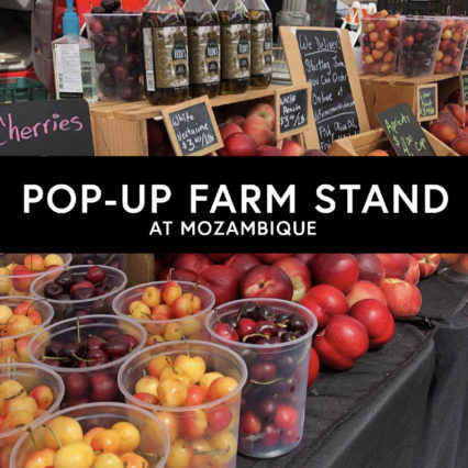 POP-UP FARM STAND @ Mozambique - Laguna Beach